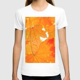 Fall Orange Maple Leaves On A White Background #decor #society6 #buyart T-shirt