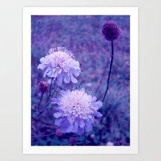 Meadow of Dreams Art Print