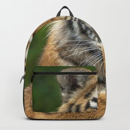 Super Cute Little Tiger Kitten Close Up Ultra HD Backpack