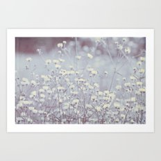 Wild Abandon -- Dreamy Fleabane Daisies in Lavender Gray Mist Art Print