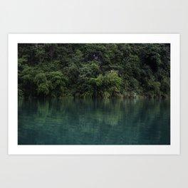Trees on the Riverbank Art Print