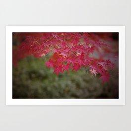 Tokyo Leaves Art Print