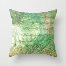 Spring Lace Throw Pillow