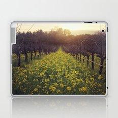 Vineyard Sunset Laptop & iPad Skin