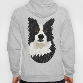 Beautiful Border Collie Hoody