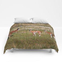 Guanaco family Comforters