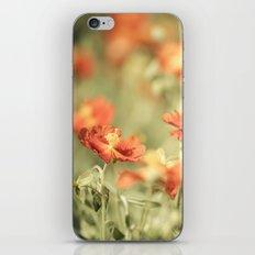 Field of Orange iPhone & iPod Skin