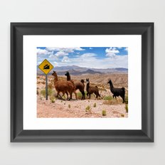 Downhill Llamas Framed Art Print