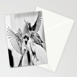 Urban Musketeers Stationery Cards