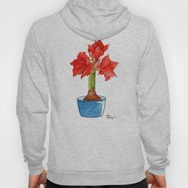 Red Amaryllis Hoody