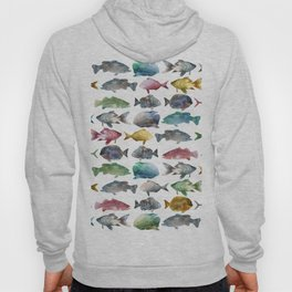 Suumer Color fishs Hoody