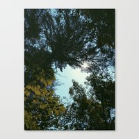 hiking Canvas Prints featuring Hiking  by William Reynolds