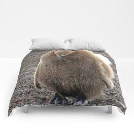 King Penguin Chick Comforters