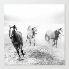 Running with the horses Canvas Print