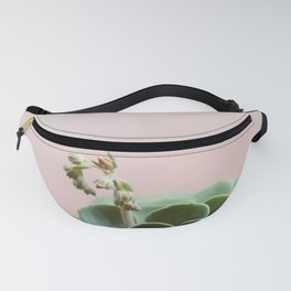 Echeveria On Pink #6 Fanny Pack