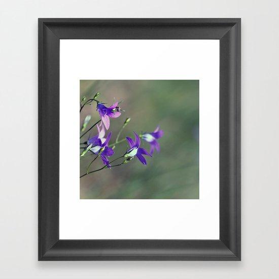 BlueBell Flower Nature Photography  Framed Art Print