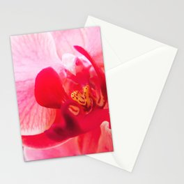 Close up Orchid 23 Stationery Cards
