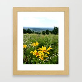 Virginia Flowers Framed Art Print