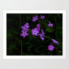 Purple... Art Print