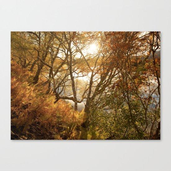 November falls Canvas Print