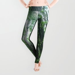 Redwood National Park- Pacific Northwest Nature Photography Leggings