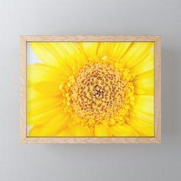 Sunny Summer Love - Yellow Gerbera #1 #decor #art #society6 Framed Mini Art Print