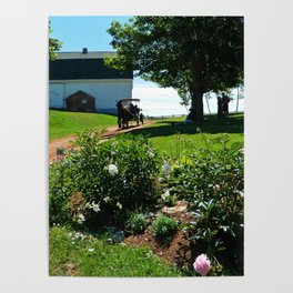 Horse Drawn Carriage on Farm in PEI Poster