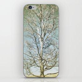 Tree 5 iPhone Skin