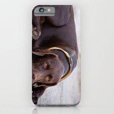 the hound dog iPhone 6s Slim Case