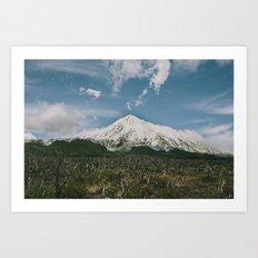 Volcán Lanín Art Print