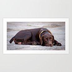 the hound dog Art Print