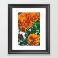 Flower No. 2 Framed Art Print