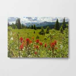 Red paintbrush with mountain view Metal Print