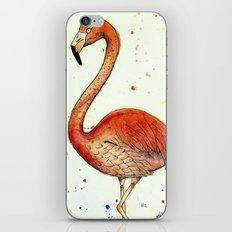 Colourful Flamingo  iPhone & iPod Skin
