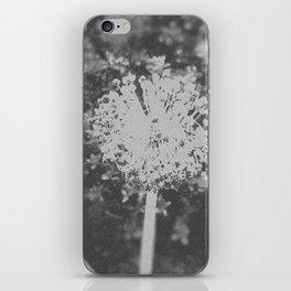 BW Spring iPhone Skin