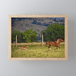 Mare and Foal Framed Mini Art Print