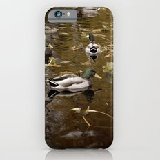 Ducks iPhone 6s Slim Case