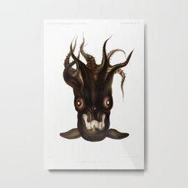Special black squid illlustration from Résultats des Campagnes Scientifiques by Albert I, Prince of Metal Print