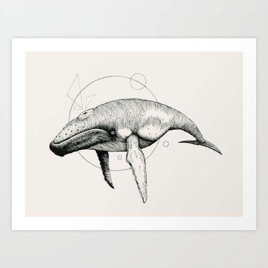 'Wildlife Analysis VII' Art Print