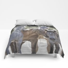 Family Time cr Comforters