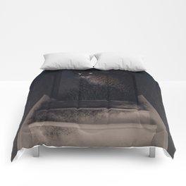 Stairwell Comforters