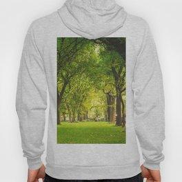 Central Park Summer Hoody