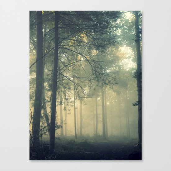 Start Wandering Canvas Print