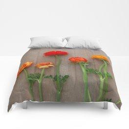 Orange Ranunculus flowers Comforters