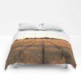 Rows Comforters