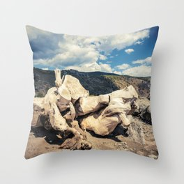 Maritime pine trunk leaning on a Cilento beach Throw Pillow