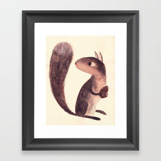Squirrel Framed Art Print