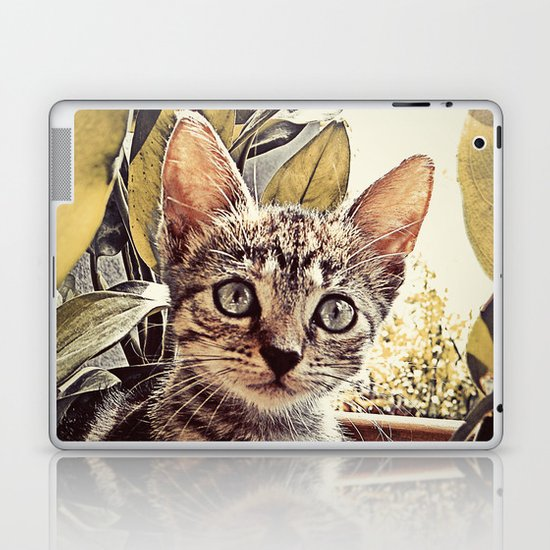 Mouser Laptop & iPad Skin