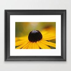 Black eyed beauty Framed Art Print