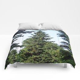 Evergreen Trees so Green Comforters